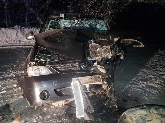 Водитель попавшей в аварию машины нашёл на онежской трассе бесправника