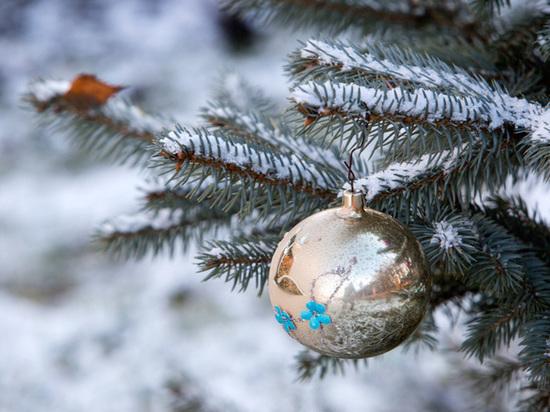 Старый Новый год в Симферополе встретят народными гуляниями