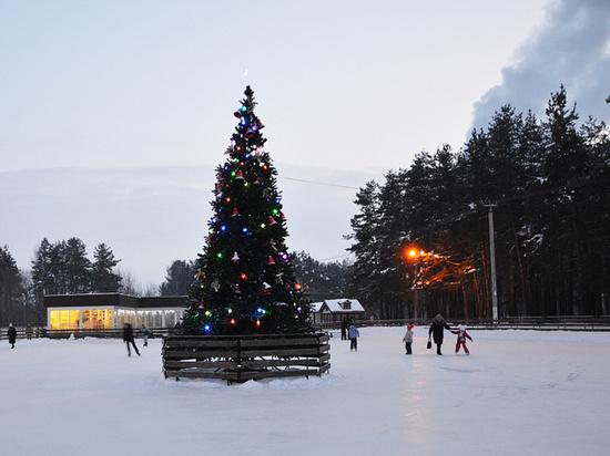 В Твери открылся каток с ледовыми дорожками и прокатом ходунков