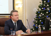 Мэр Вадим Кстенин раскритиковал уборку тротуаров в Воронеже