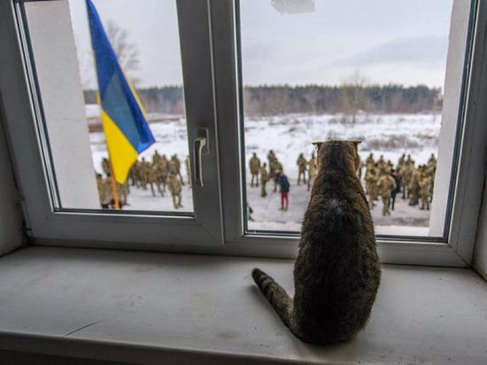 На Украине оценили вероятность войны с Россией: «готовимся отразить наступление»