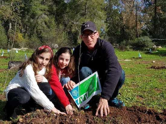 Еврейский Фонд поставил цель высадить полумиллиона деревьев