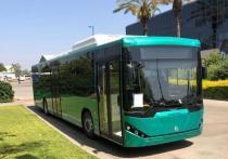 Министерство транспорта Израиля санкционировало производство израильских электробусов.