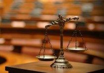 В Мордовии к суду готовится дачный маньяк