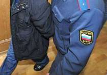 В Ярославской области иностранец избил полицейского