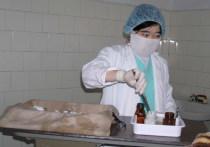 В Бишкеке хотят разрешить проводить трансплантацию органов частникам