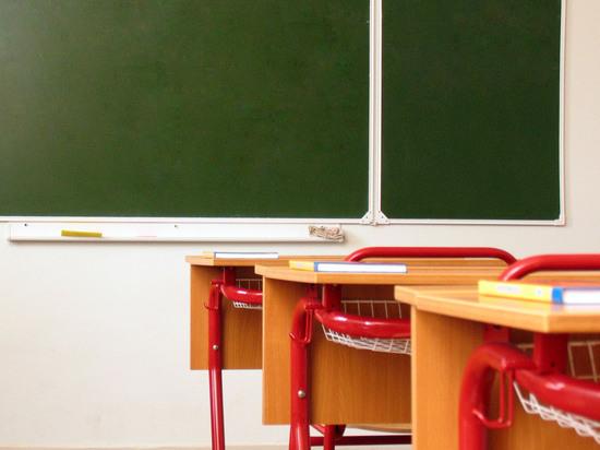 Школьник обвинил в избиении учителя, сделавшего ему замечание