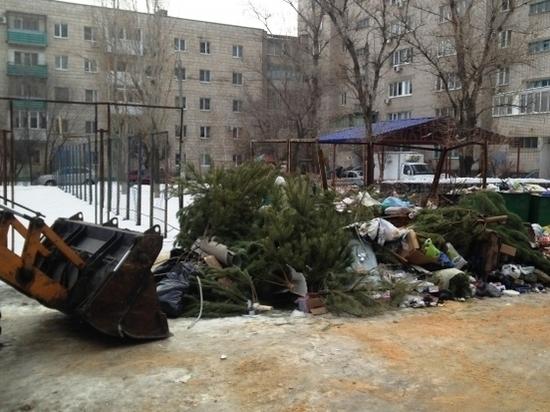 В Волгограде регоператор может пересмотреть январскую плату за вывоз ТКО