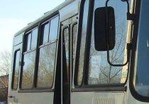 Водитель маршрутки под Тверью высадил пассажира и сразу сбил его