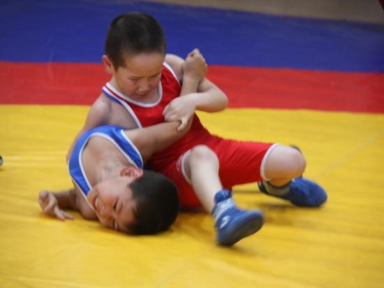 На фестиваль «Юный борец» в Калмыкии не пустили 40 сельских детей
