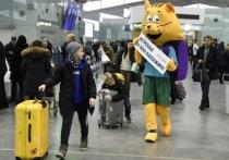За 2018 году через аэропорт Пулково «прошли» более 18 миллионов пассажиров