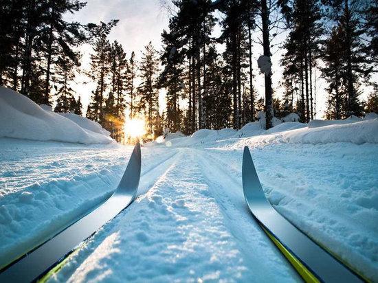 В Мордовии пройдет экологическая лыжная гонка