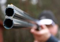 Дикая охота по-уральски: cвердловских егерей уличили в незаконном отстреле лосей