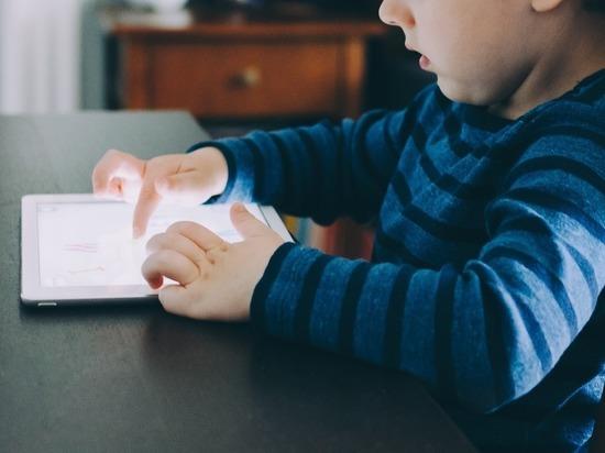 На поиск вредной для детей информации выделили больше 600 млн