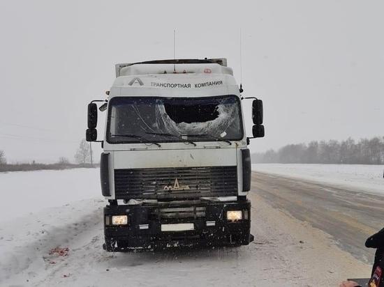 В Тамбовской области водитель фуры получил травму головы из-за попавшего в лобовое стекло куска льда