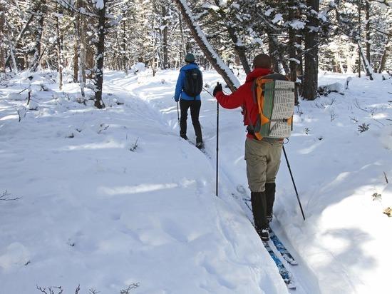 В Гороховецком районе лыжник провалился под лед