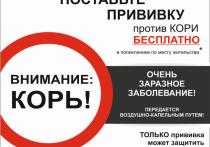 В Екатеринбурге ограничили массовые мероприятия из-за кори