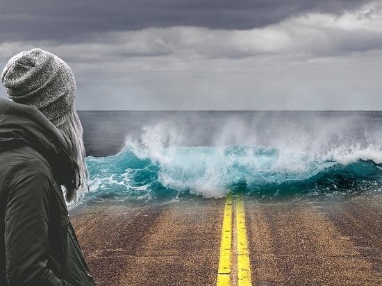 Глобальное потепление провоцирует войны и миграцию: новое исследование