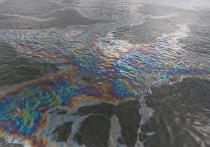 Возгорание танкеров в Керченском проливе не грозит побережью Крыма - ученый
