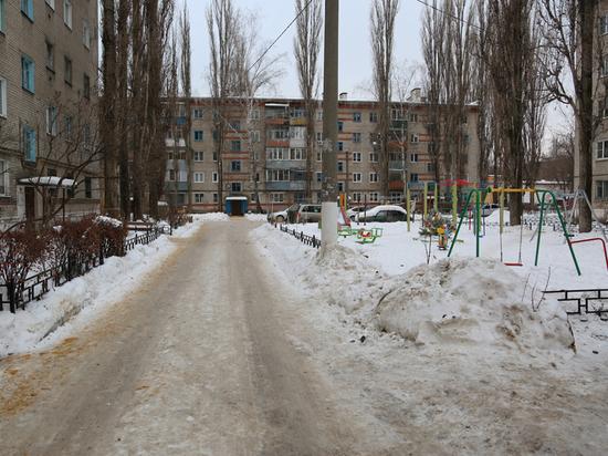 Воронежский мэр проинспектировал дворы