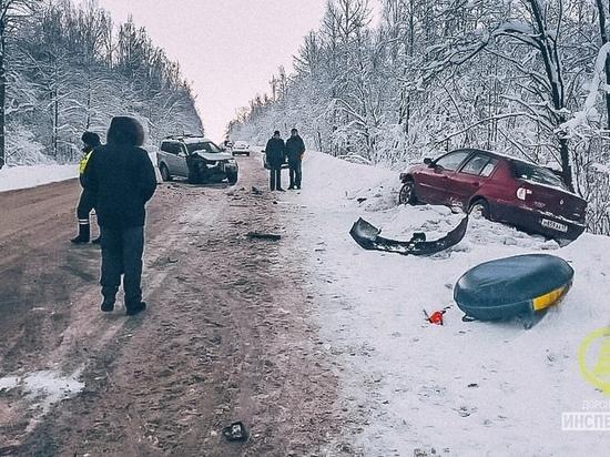 На трассе смерти в Ленобласти опять погиб ребенок