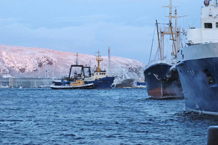 Мурманские рыбаки возмущены травлей рыбной отрасли в федеральных СМИ - МК  Мурманск