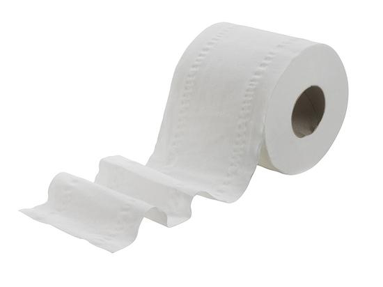 В Германии призвали отказаться от туалетной бумаги