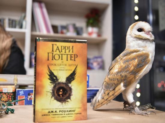 Всемирная Ночь Гарри Поттера в Ульяновске