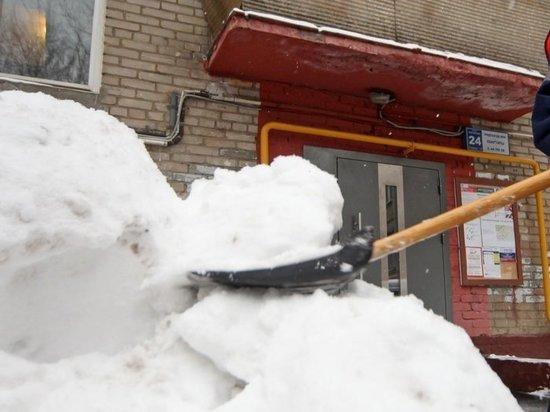 Вместо учителей убирать снег у саратовской школы отправили учеников
