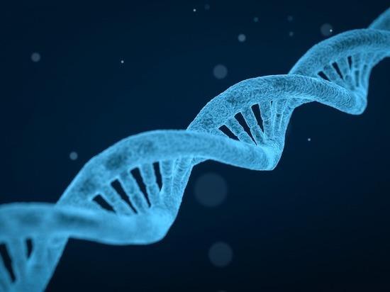 Российские генетики объяснили, чем опасен эксперимент с генетической модификацией детей