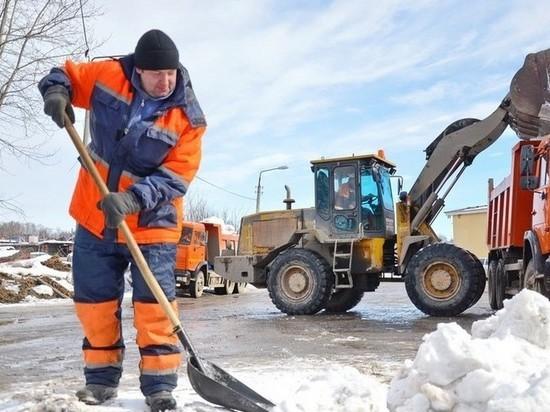 Власти Центрального района Воронежа признали проблемы с уборкой тротуаров