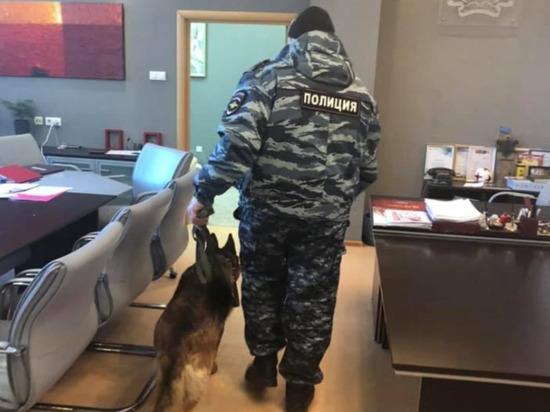 Чиновницы «заминированной» новосибирской мэрии сделали фото с собакой