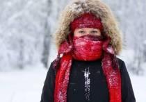 Мороз до -44: новосибирское ГУ МЧС советует, как защититься от холода