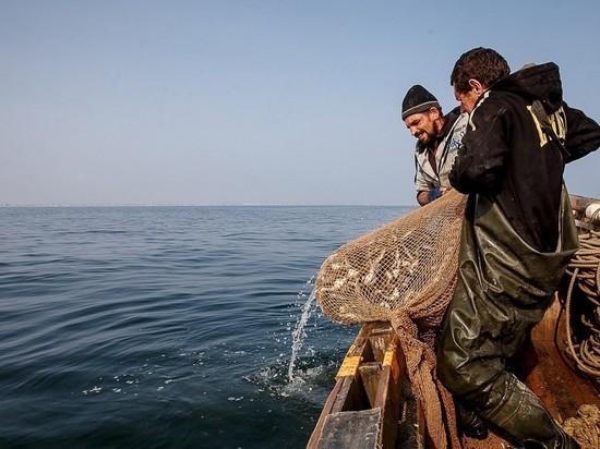 Низкий улов рыбы на Украине связан с российским статусом Крыма