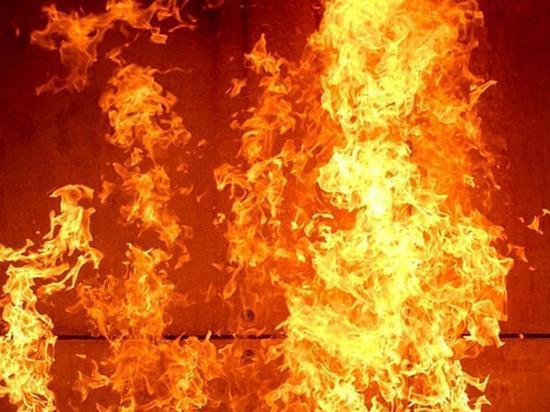 На пожаре в Щелкино спасли трех человек