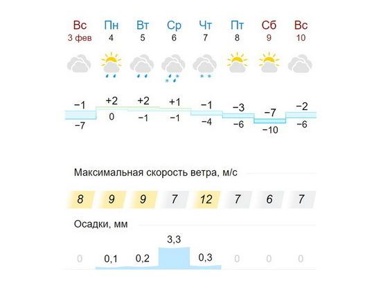 Теплее нормы: февраль в Воронеже не обещает сильных морозов
