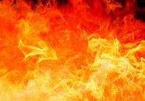 Крупный пожар произошел в квартире в центре Москвы, жильцы эвакуированы