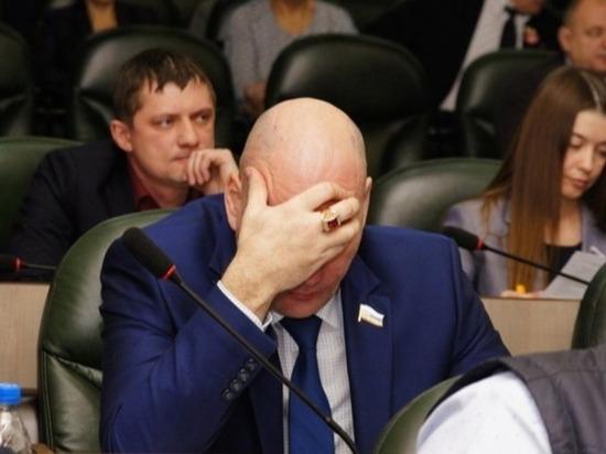 Десять депутатов, скрывших свои доходы, простили?