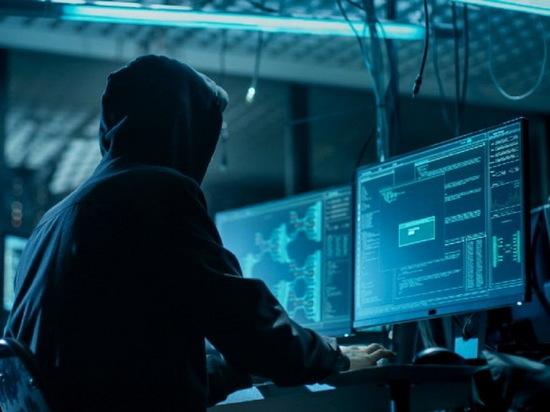 Воронежское УФСБ поймало хакера, атаковавшего правительственные сайты