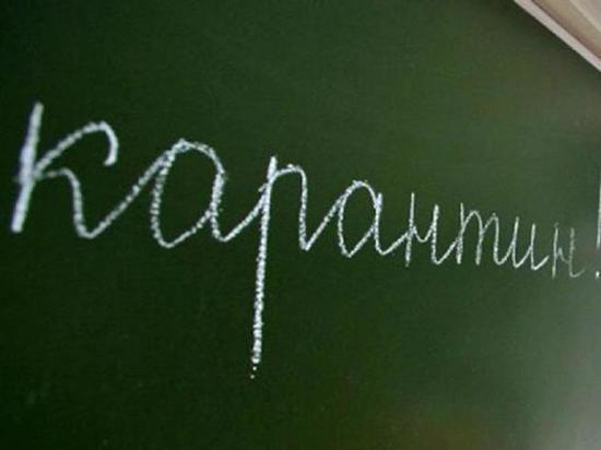 В Воронеже на карантин по гриппу закрыли первую в 2019 году школу