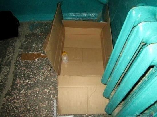 Подкидыша из коробки усыновила в Камышине бездетная семья