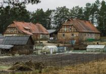 Лишь бы не было войны: тревоги и радости калининградских окраин