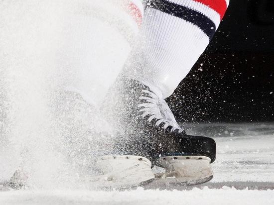 В Воронеже отметят День зимних видов спорта