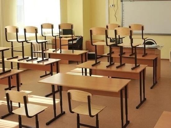 Часть классов кировских школ закрывается на карантин