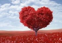 Что подарить на День всех влюбленных