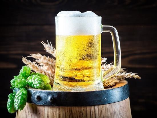 Учёные рассказали, чем пиво опасней водки