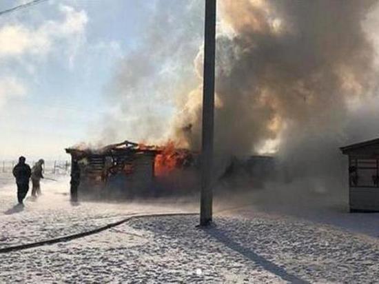 В Мамонах сгорело здание собачьего приюта