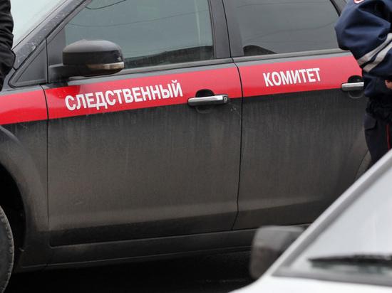 В деле о гибели малыша в Подольске оказались замешаны органы опеки