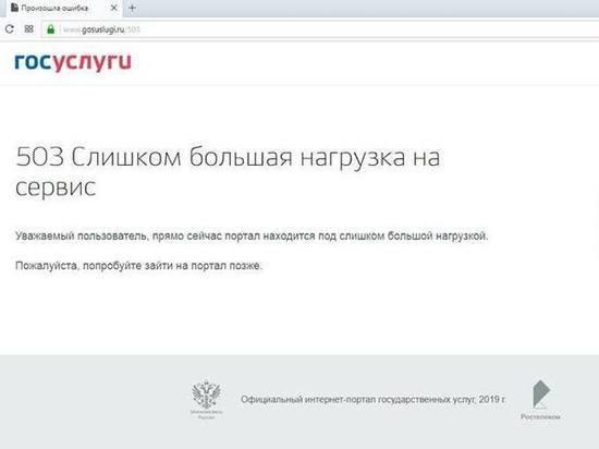 Родители дошколят перегрузили сайт Госуслуг и мэрии Екатеринбурга