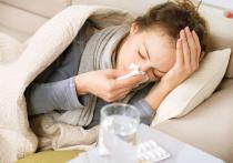 Вирусная инфекция под названием грипп-2019 поразила уже более половины россиян